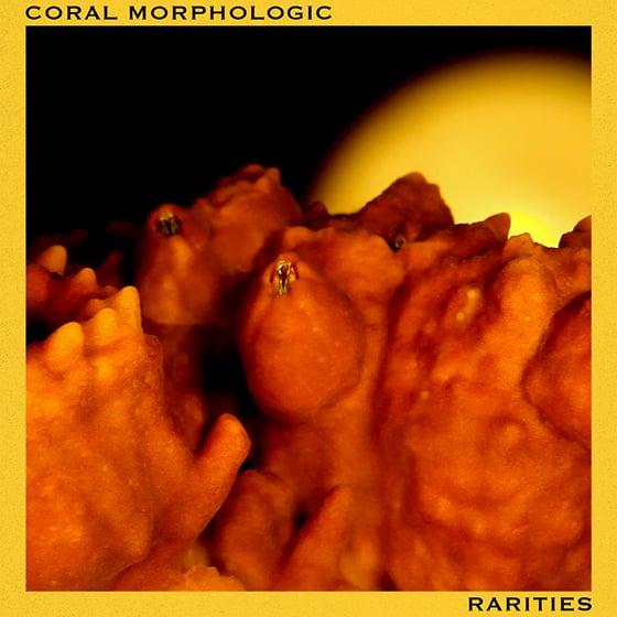Image of Rarities (Digital Album)