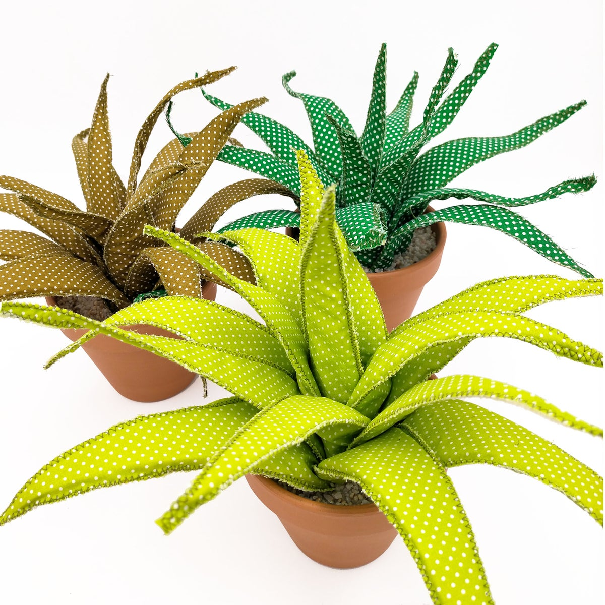 ALOES  (new)