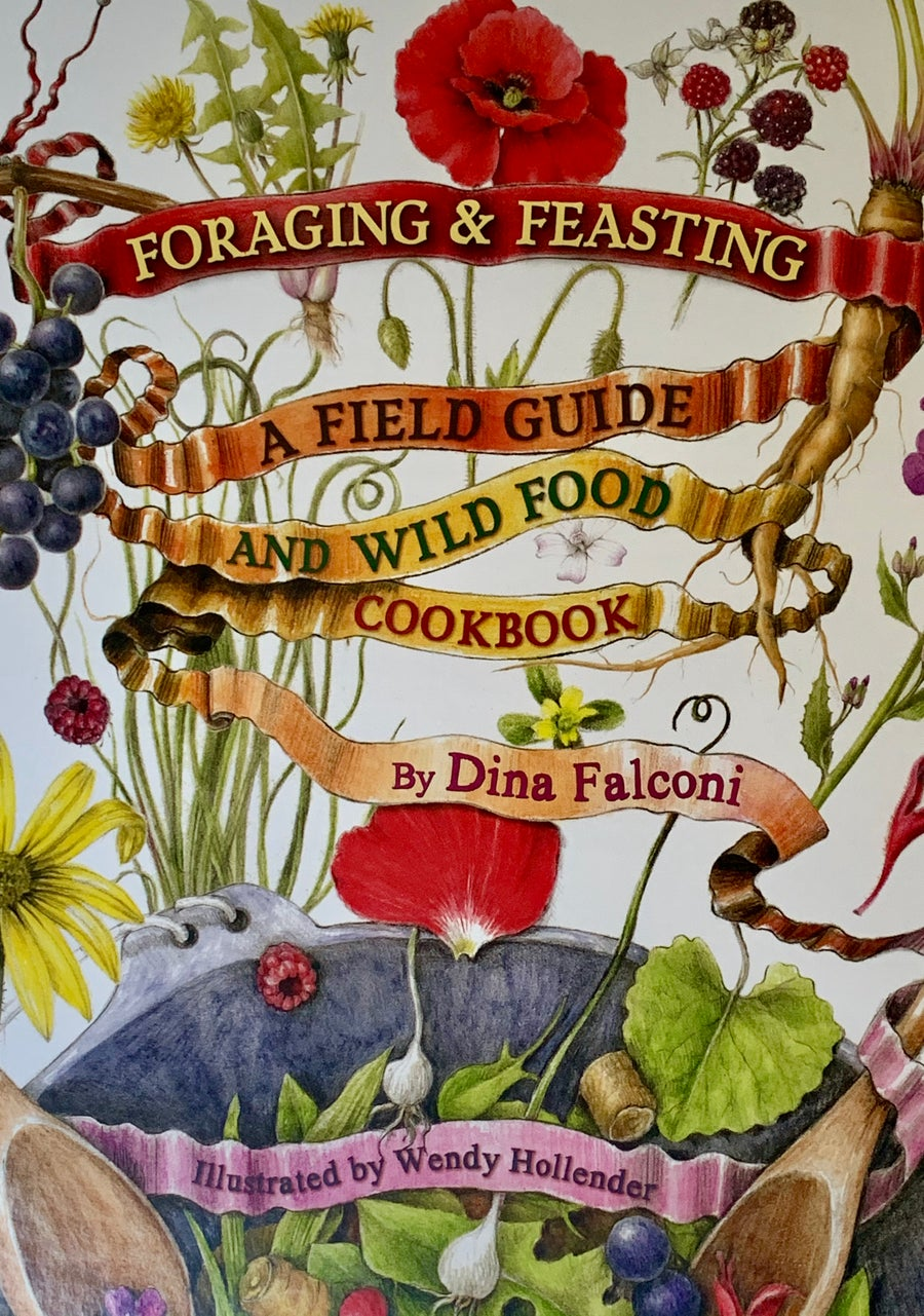 Image of Foraging & Feasting: A Field Guide and Wild Food Cookbook