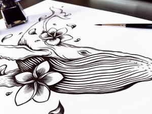 Image of Flowery Whale