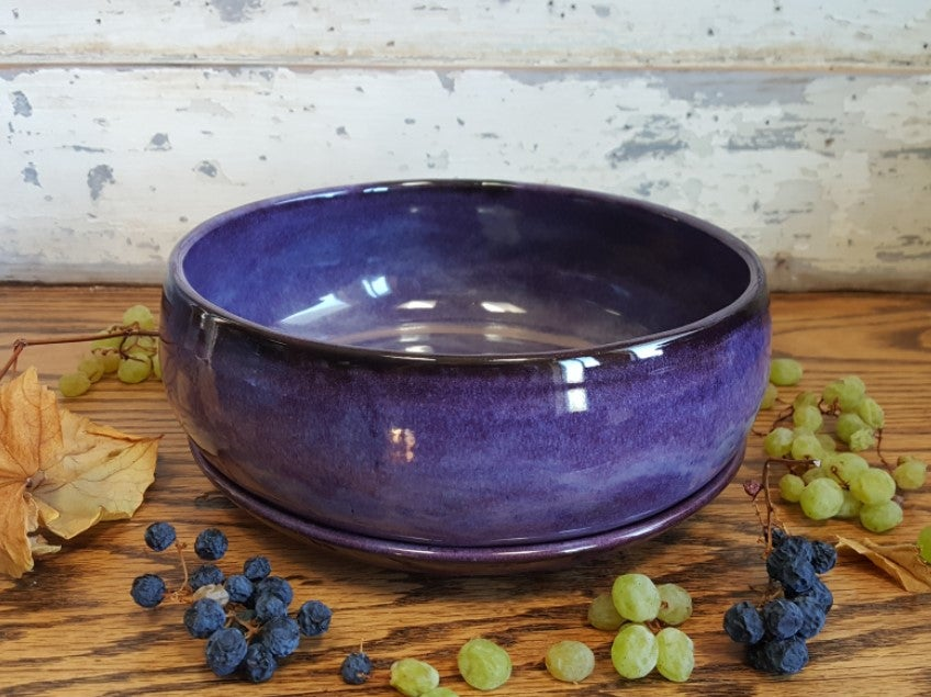 Image of One Dish Meal Bowl with Plate: Huckleberry (Purple)