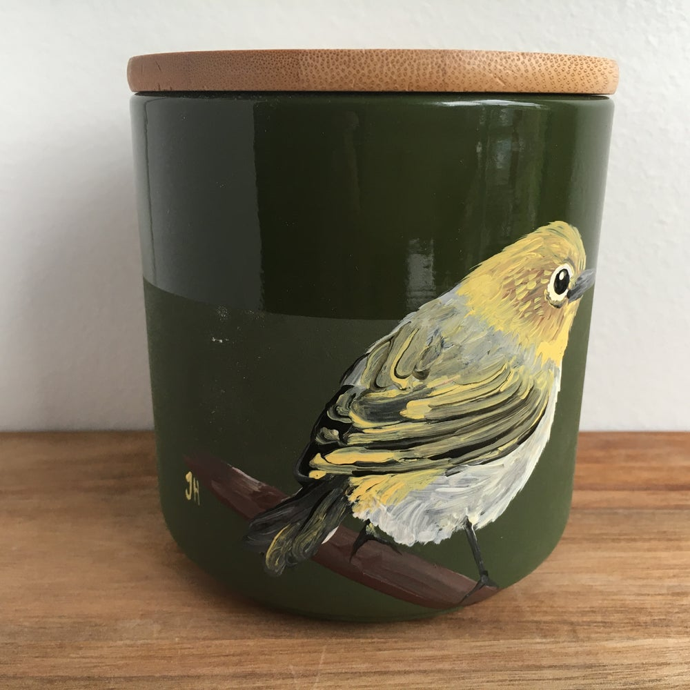 Silvereye Canister