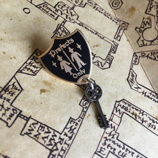 Image of Special Bathroom Key Pin