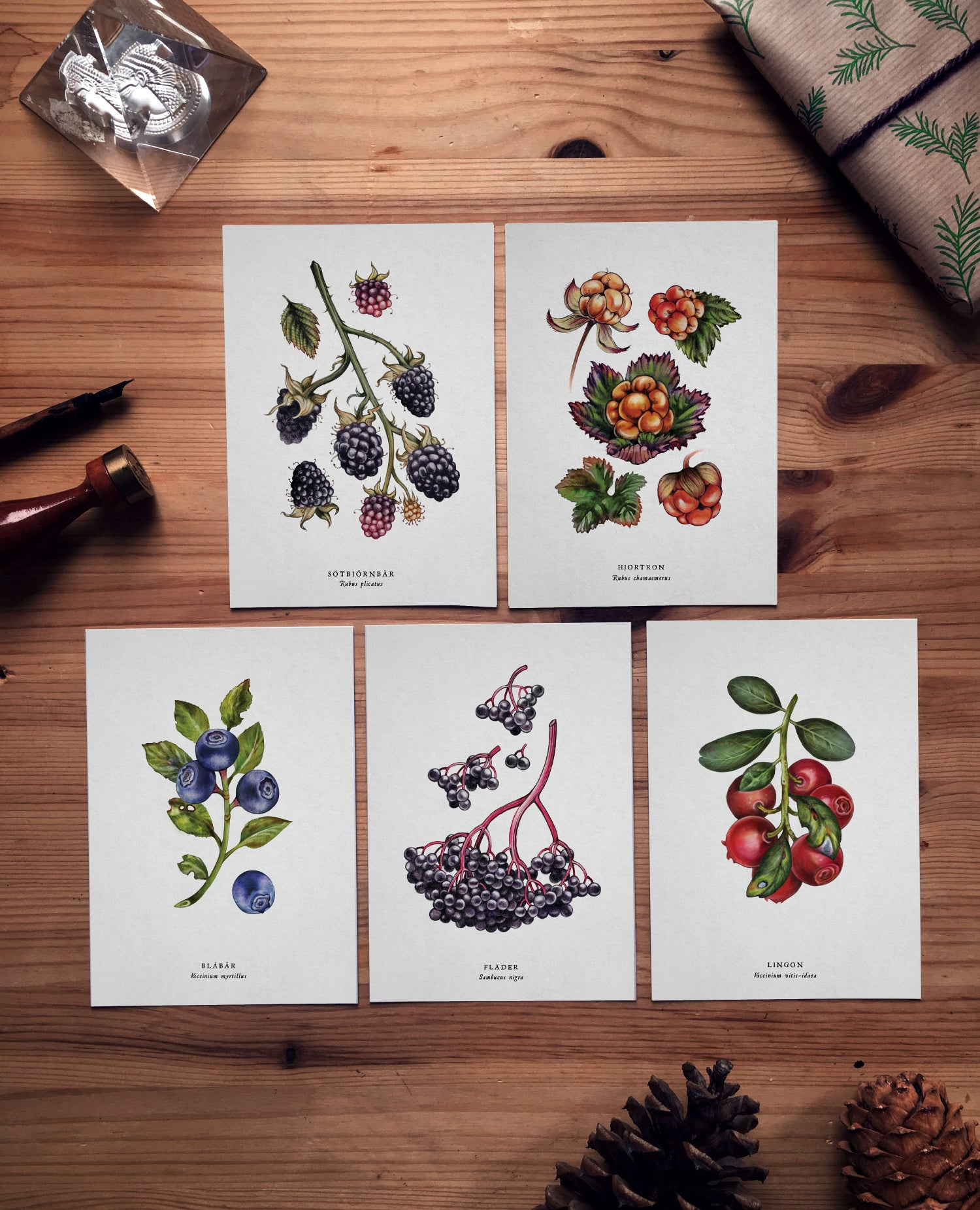 Image of BERRY POSTCARD SET