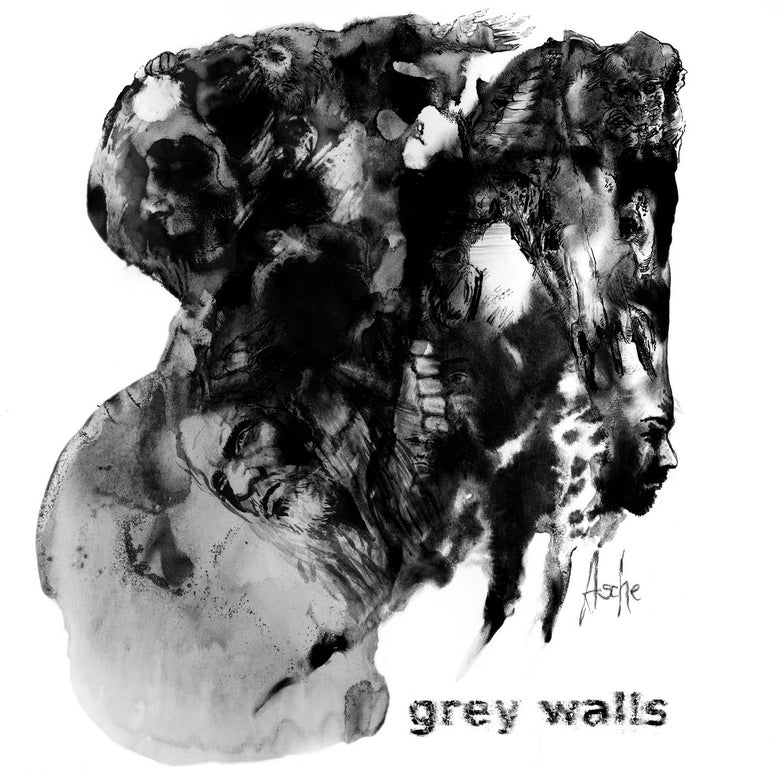 Image of Grey Walls - Asche LP