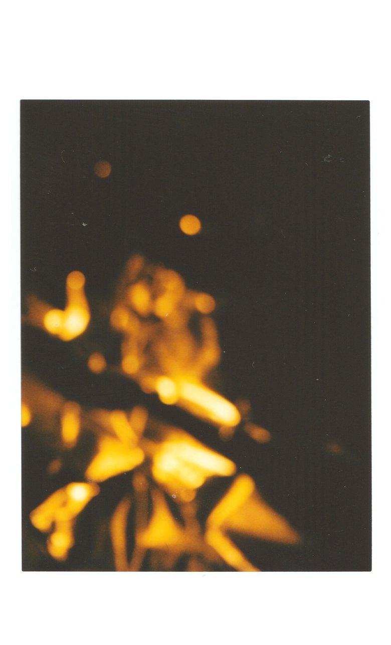"""Image of Quiet Evenings """"Fault"""" c60"""