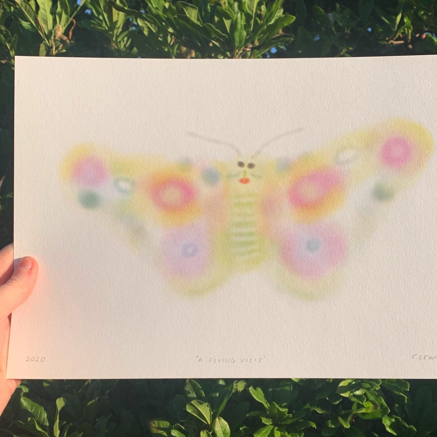 Butterfly Digital Print