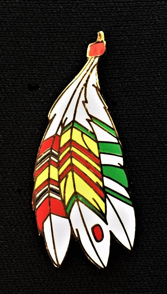 Image of Vietnam Veteran 3 Ribbons Feathers Pin