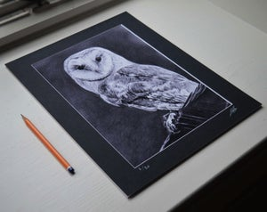 Night Owl (Limited edition print) On Sale!!