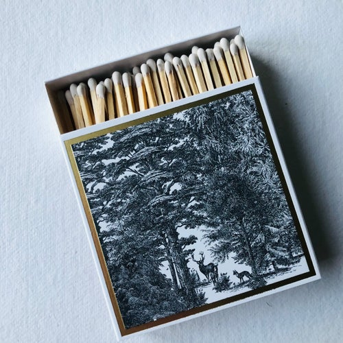 Image of Forest Matches