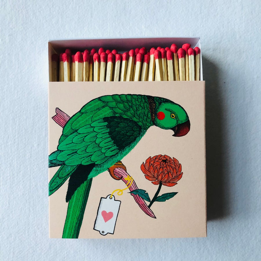 Image of Parrot Matches