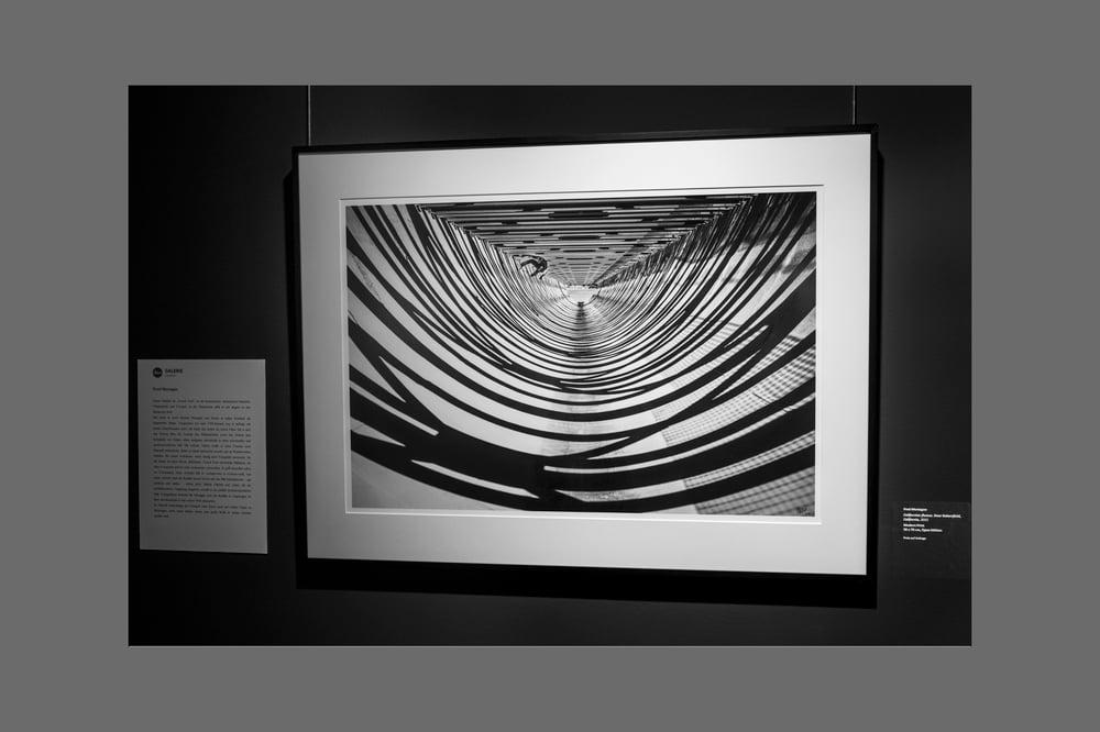 Image of BRANDON WESTGATE - FINE ART PRINT