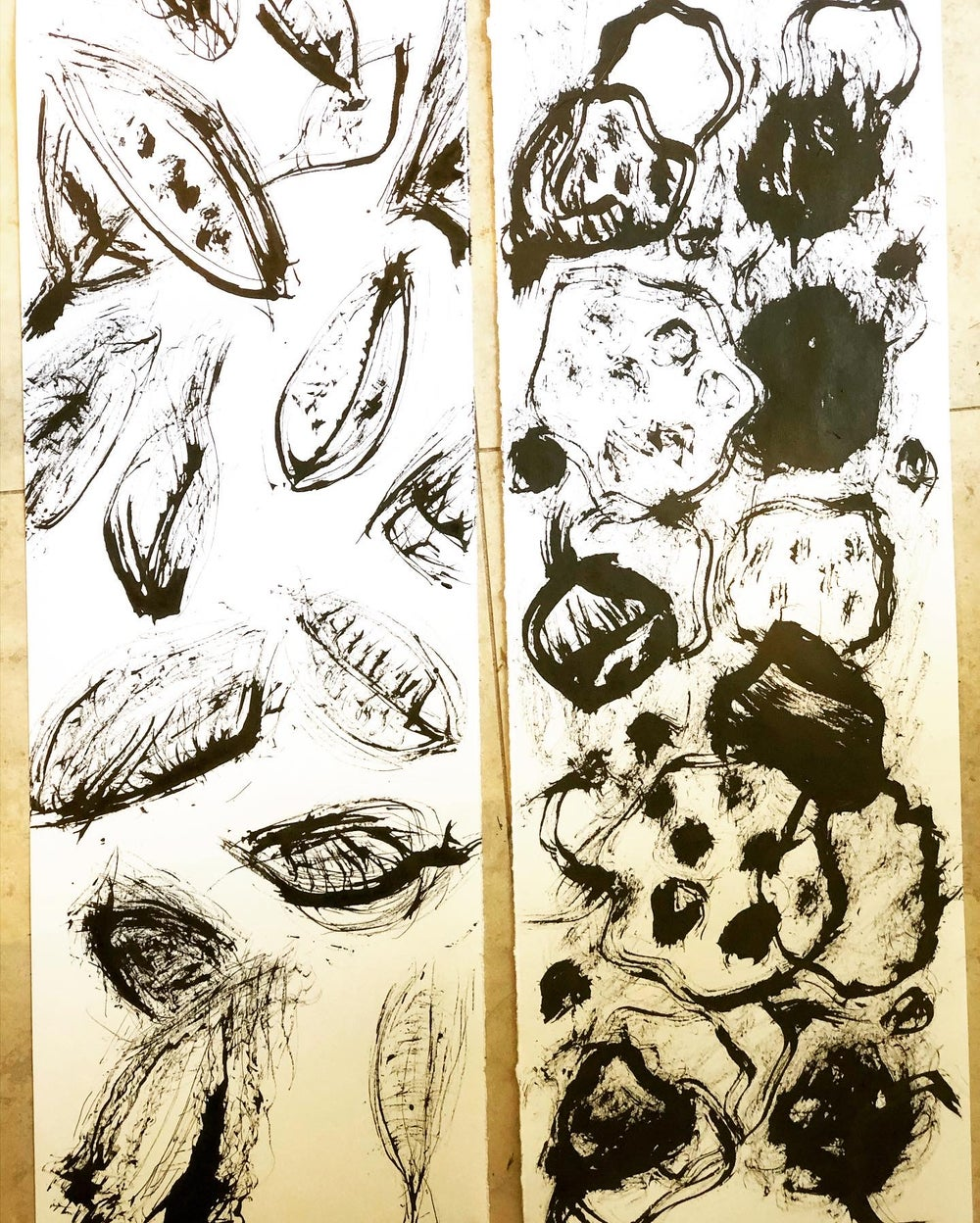 Image of JANUARY SEEDS TO ABSTRACTION WORKSHOPS