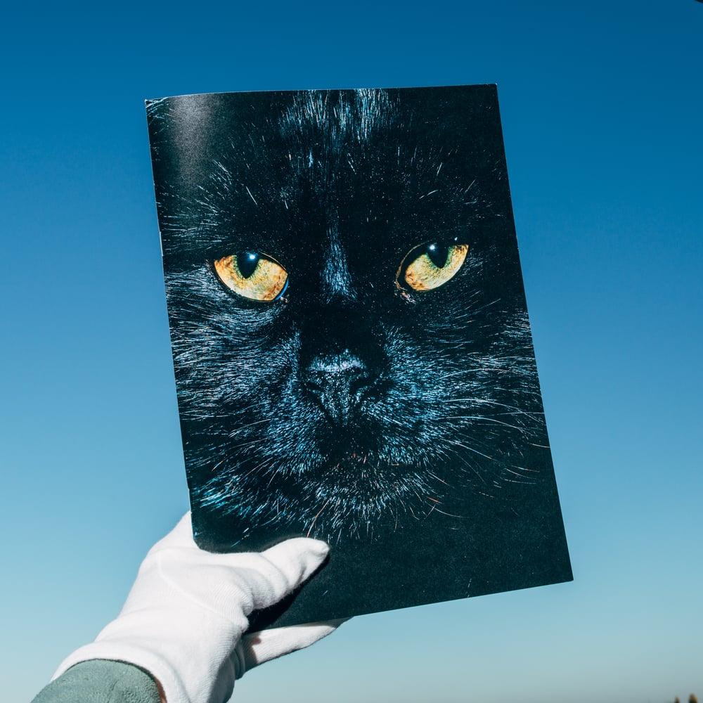 Image of Nikita Teryoshin - Backyard Diaries Vol.1 - BLACK CAT EDITION incl. Print