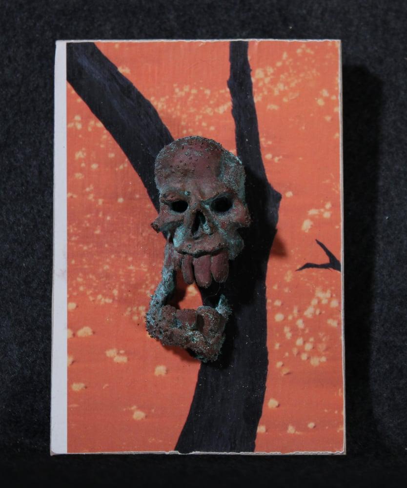 Image of Skull plaque 2