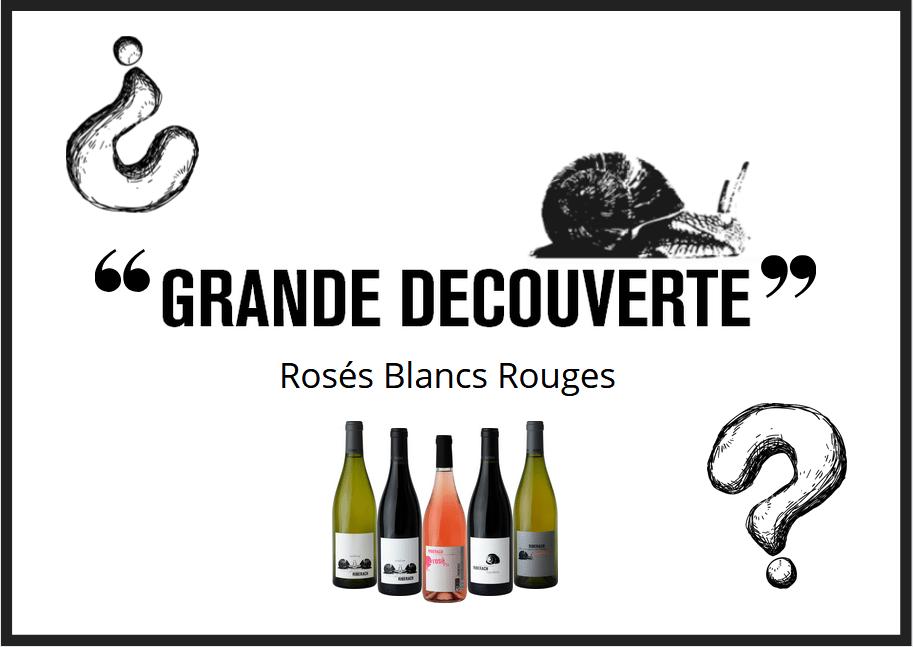 """Image of """"Grande Decouverte"""" - 12 Bouteilles"""