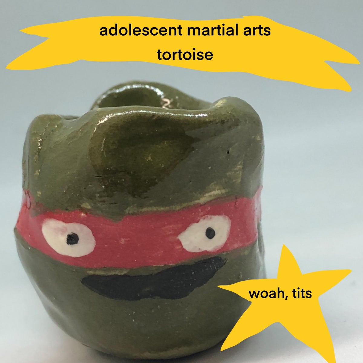 ADOLESCENT MARTIAL ART TORTOISE PIPES