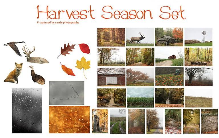 Image of Harvest Season Set