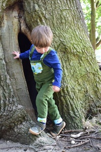 Image of Toddler Reversible Dungarees - Frog