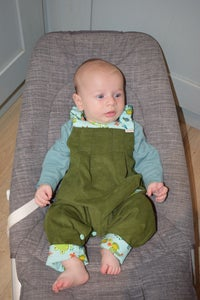 Image of Baby/Toddler Reversible Dungarees - Frogs