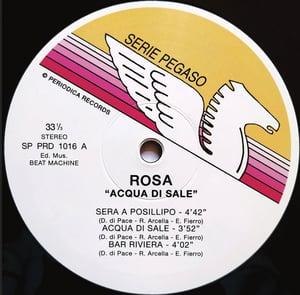 """Image of Rosa Acqua di Sale by Rosa  Mini LP 12"""" Vinyl"""