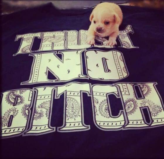 Image of Ttrust No Bitch T-Shirt