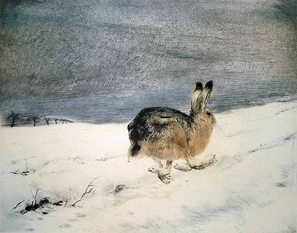 Image of KURT MEYER EBERHARDT - 'FLEEING HARE' - ORIGINAL HAND PRINTED ETCHING
