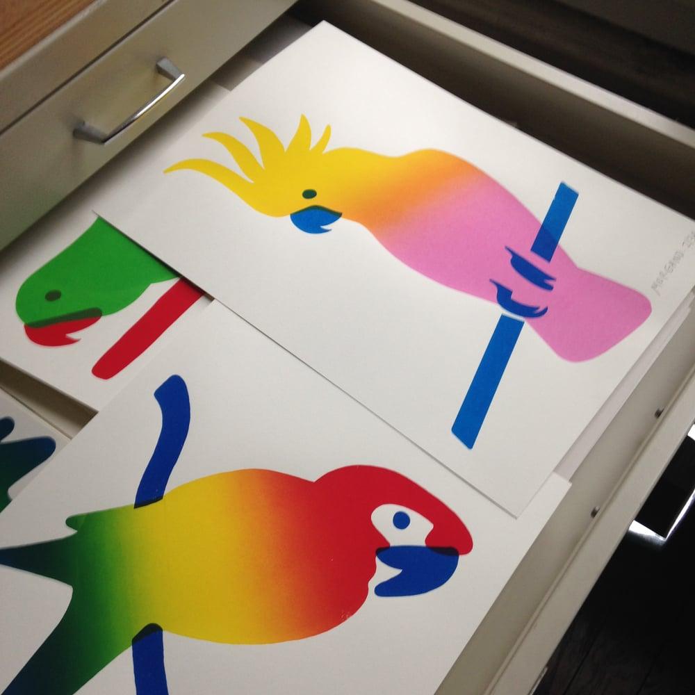 Image of Set of 3 parrots screenprints