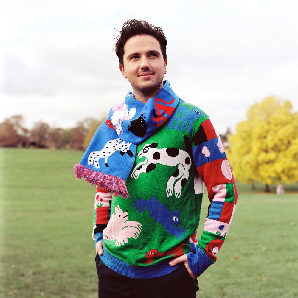 Image of Dogs in Park Knit Jumper