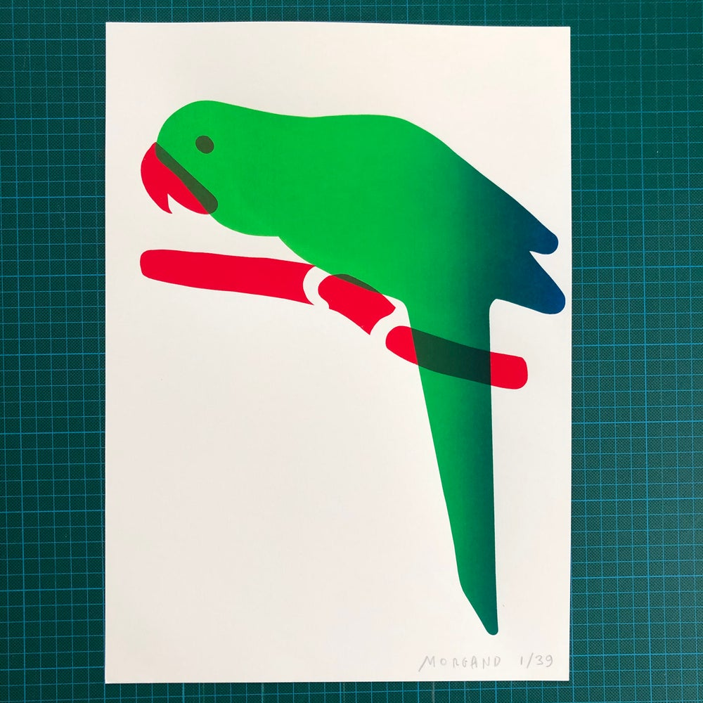Image of Green Parrot