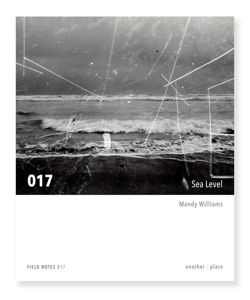 Image of Sea Level - Mandy Williams