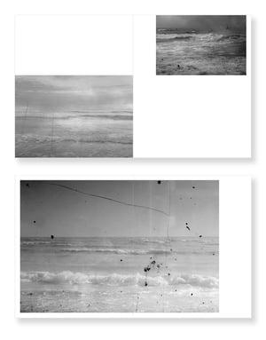 Sea Level - Mandy Williams