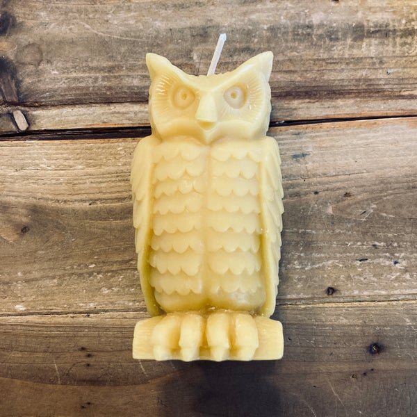 Image of Beeswax Owl
