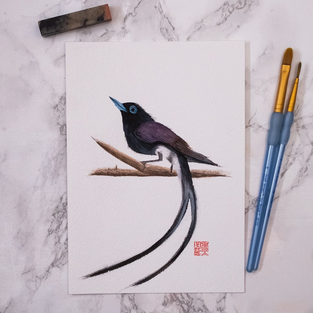 Image of Japanese Paradise Flycatcher (One off)