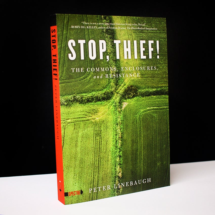 Stop, Thief! : The Commons, Enclosures, And Resistance