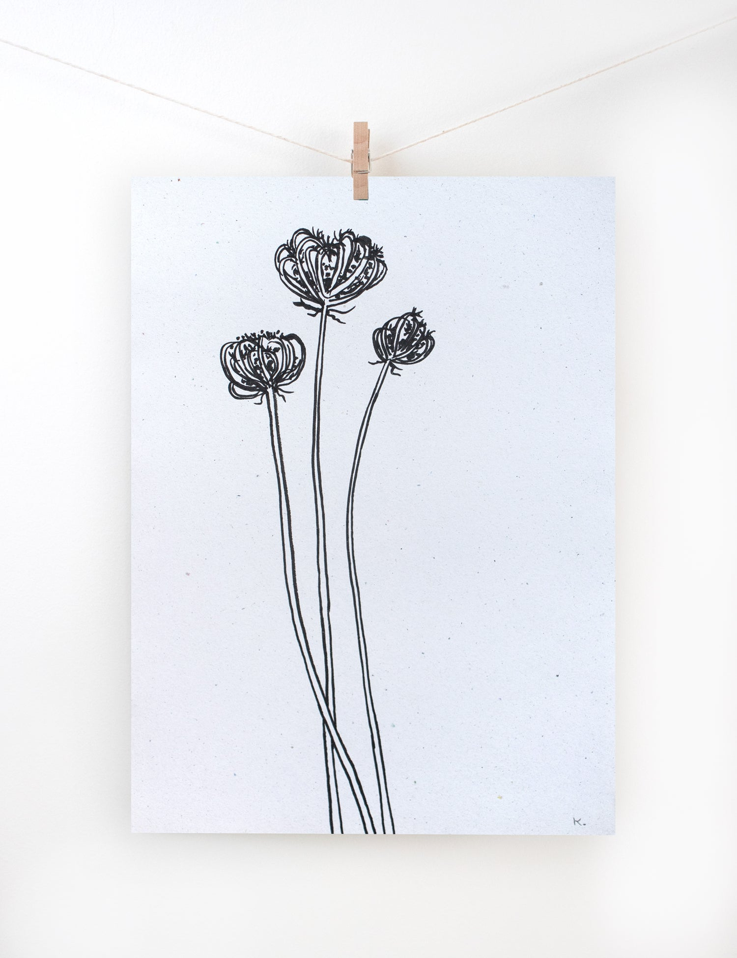 Image of BOTANICAL ART ORIGINAL III