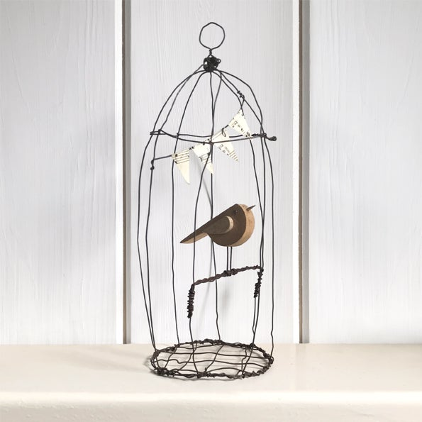 Image of East of India Naive bird in wire cage