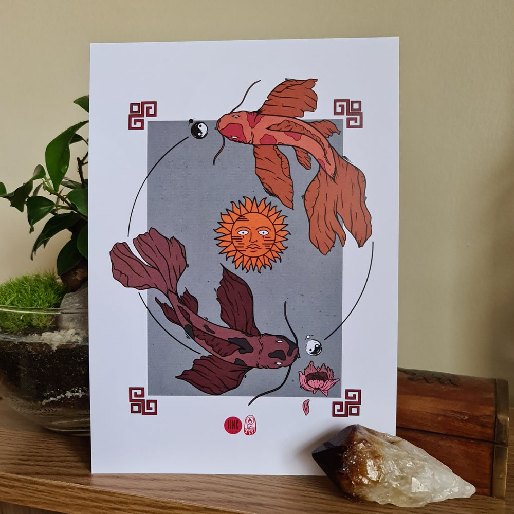 Ying and Yang Butterfly Koi