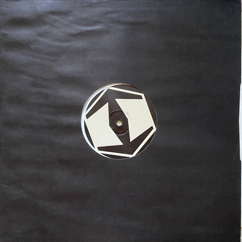 The Hazardous Dub Company – Real Dub Selection VG+/VG+)