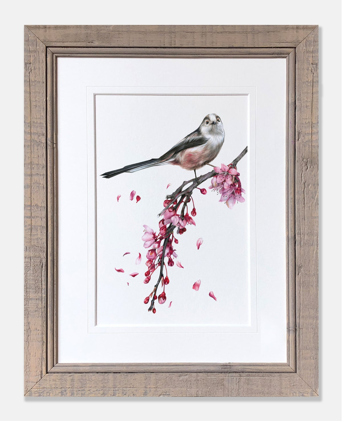 Image of Long Tailed Tit - Limited Edition Print