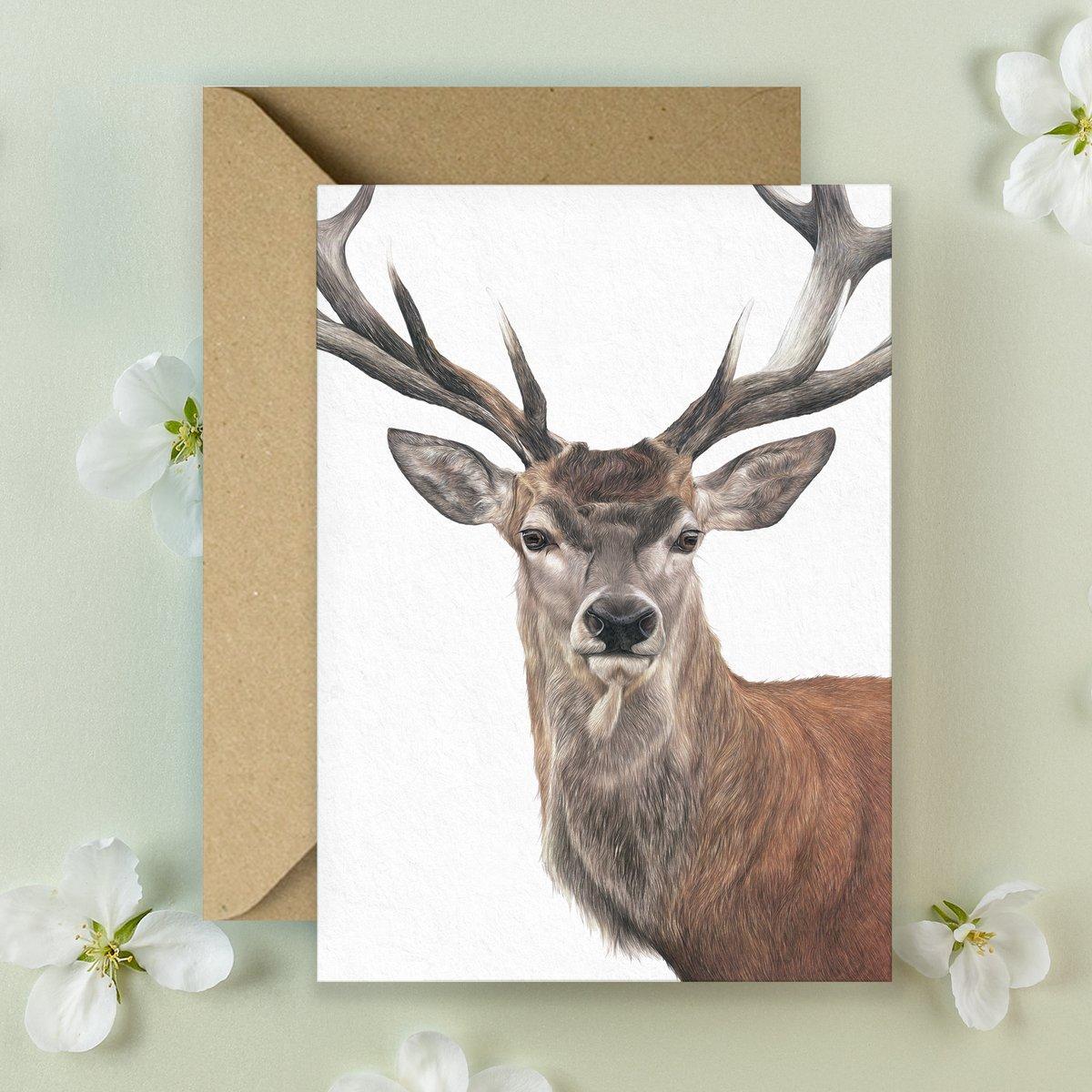 Image of 'Red Deer' Greeting Card