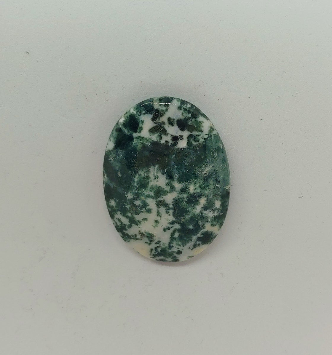 Image of Tree Agate #20-399