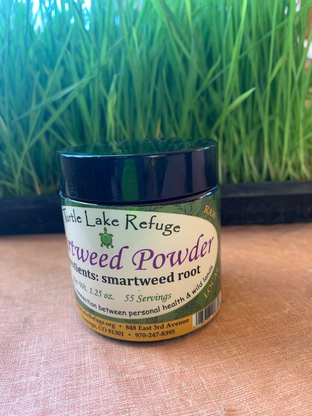 Smartweed Powder