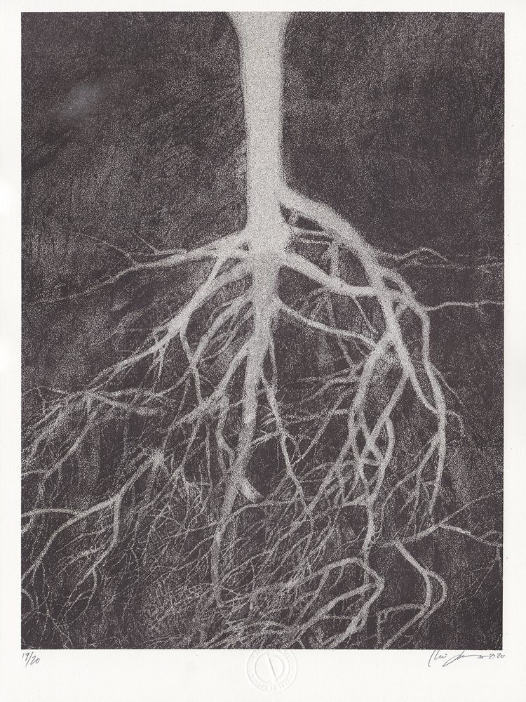 Image of Roots