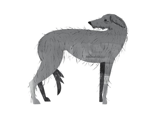 Image of The Hound