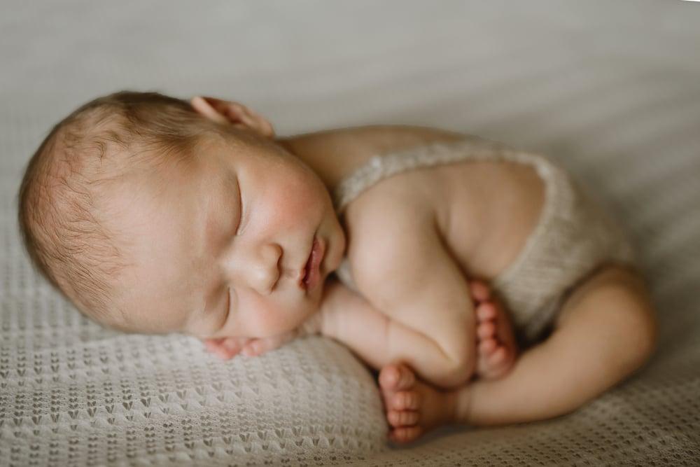 Image of newborn session ($800 value)