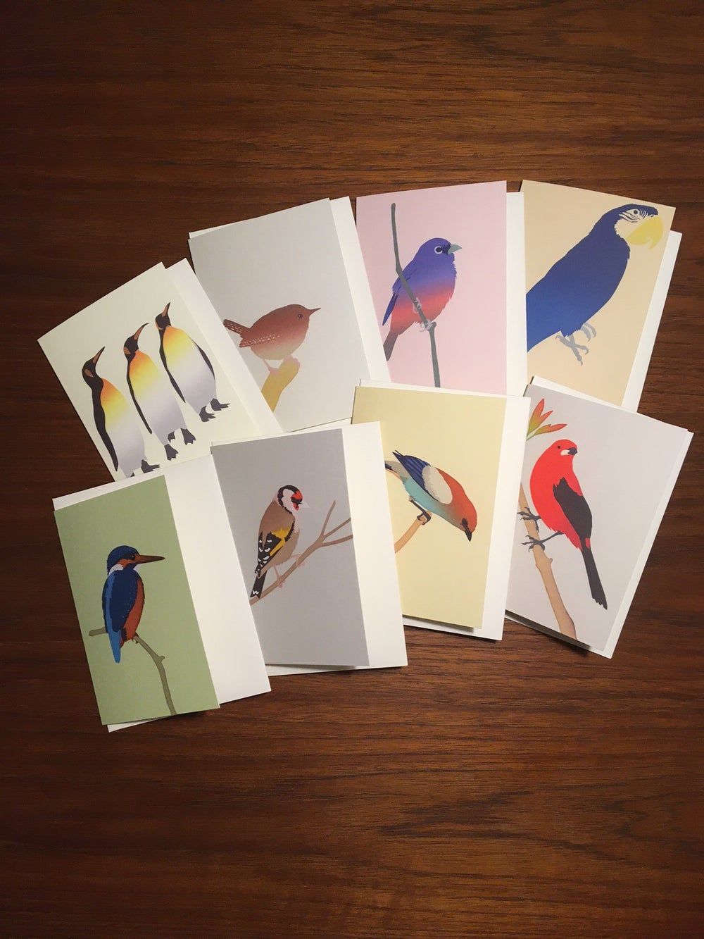 Image of New! Pack of eight bird cards