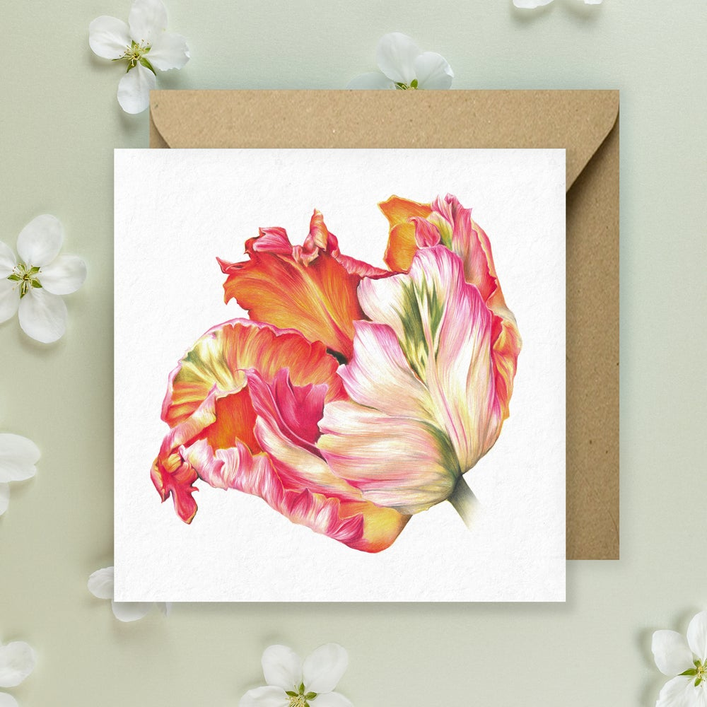 Image of Apricot Tulip - Greeting Card