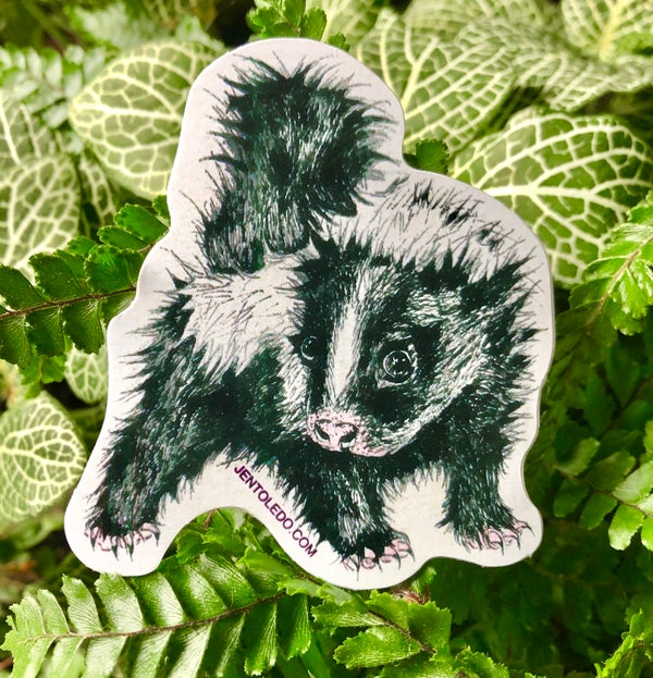 Image of Baby Skunk Sticker