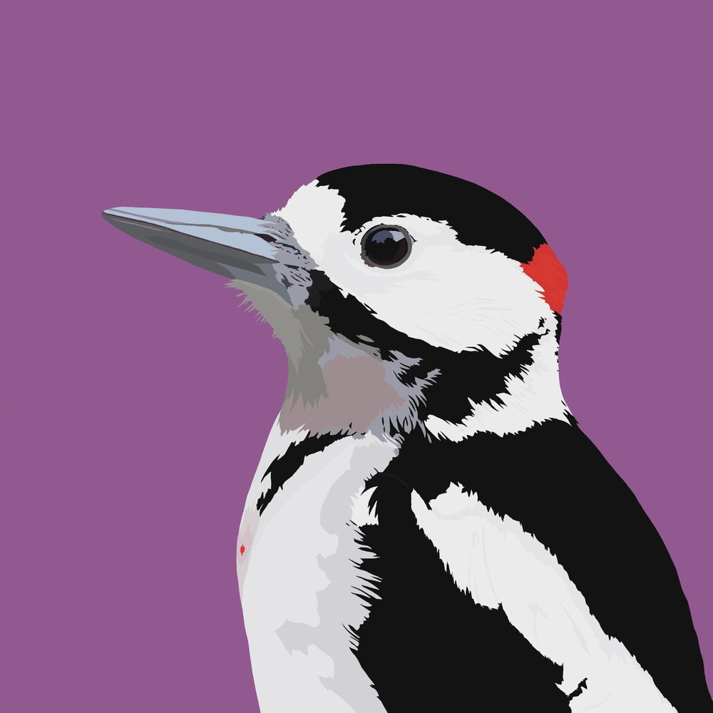 Image of Great Spotted Woodpecker Cushion